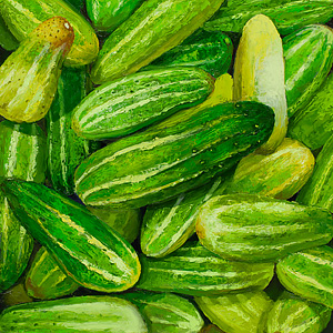 Cucumbers - Cetrioli